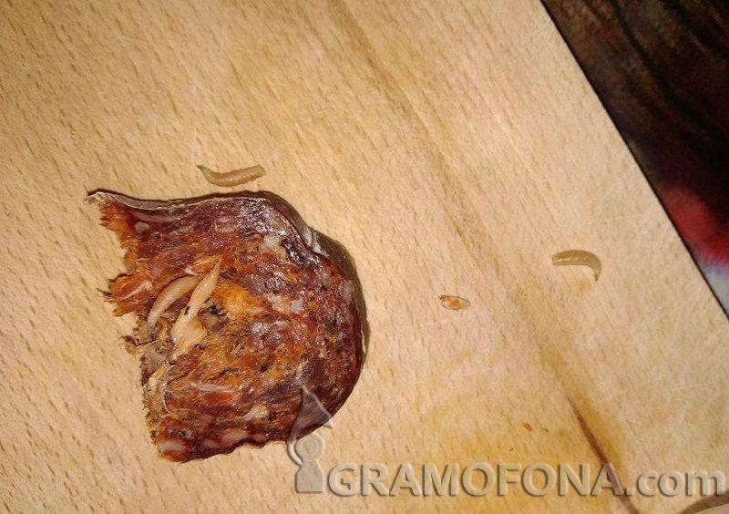 Гадост: Бургазлия си купи Странджанско дядо с червеи