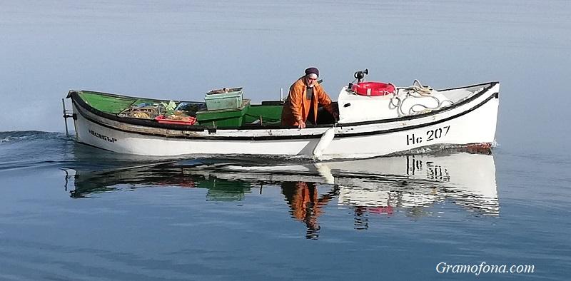 Смарид се появи в Черно море, край Ахтопол пълнят лодките със сафрид