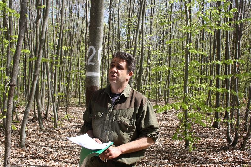 В Кости и Граматиково отглеждат дървета на бъдещето