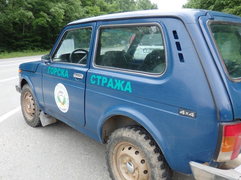 РДГ-Бургас: Няма незаконна сеч в района на с. Сливарово