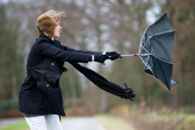 МВР с ценни съвети за безопасно поведение при силен вятър