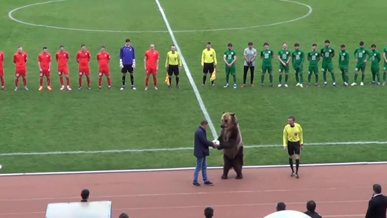 Мечка даде началото на мач в Русия