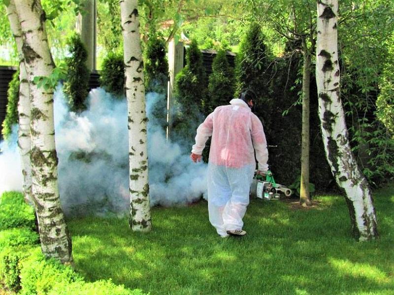 Вижте къде ще пръскат против комари в Бургас