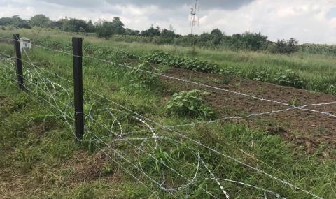 Готови са 81 км от оградата срещу диви свине на границата с Румъния