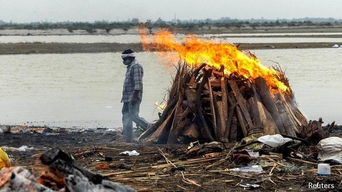 Десетки тела на починали изплуваха в свещената за индусите река Ганг