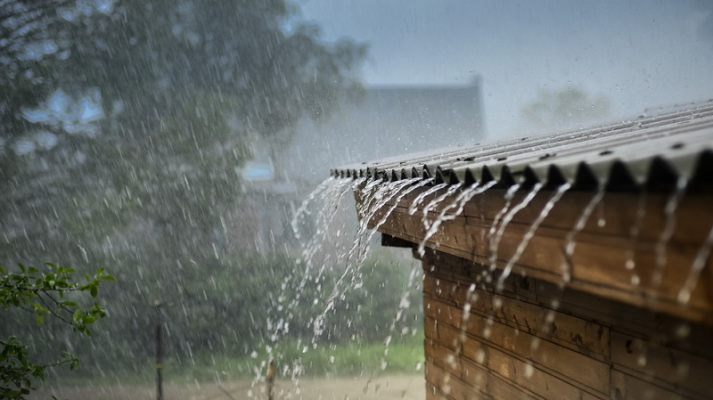Кметът на Равадиново: От нивите тече вода, все едно е по бетон