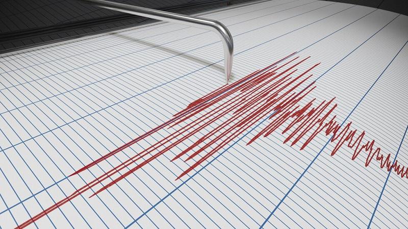 Земетресение на турско-иранската граница, има загинали