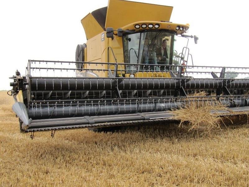 Раздават 70 млн. лева на 50 000 земеделци заради ковид кризата