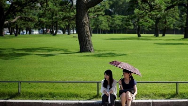 Близо 3 000 в болница, 6 починали заради жегите в Япония