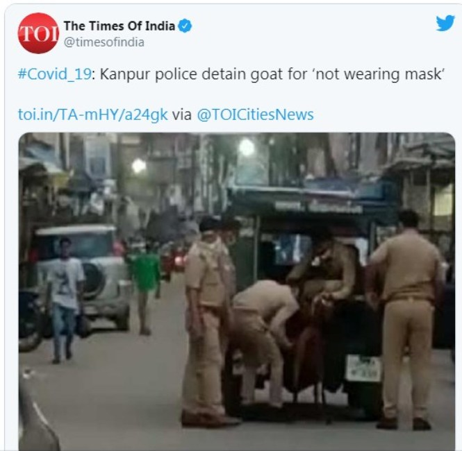 В Индия арестуваха коза, защото се разхождала без маска