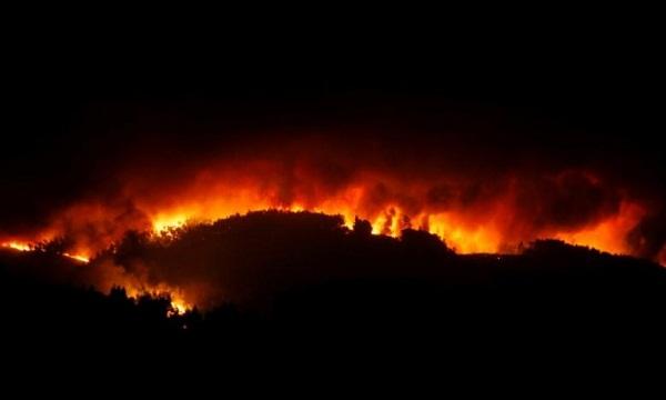 Десетки жертви на горски пожар в Португалия
