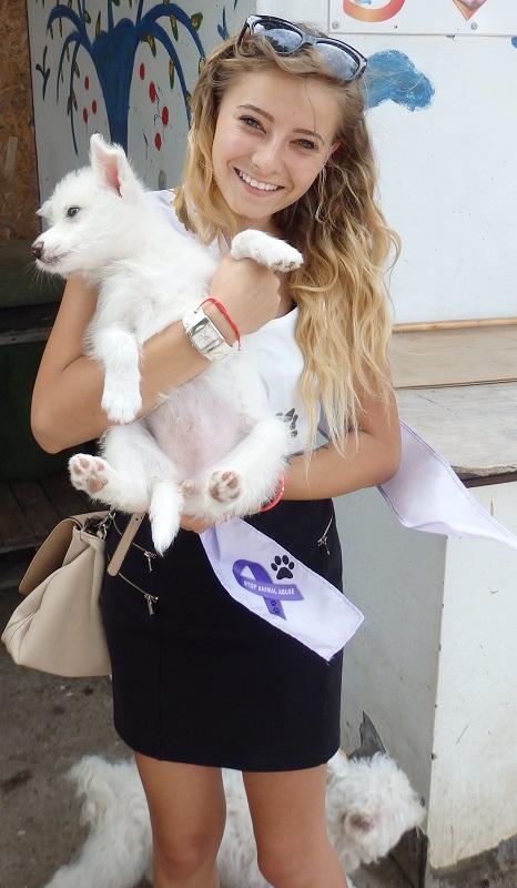 Малки красавици помагат на бездомни животни