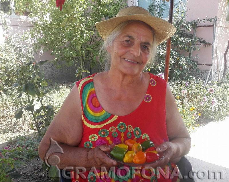 Испанският пипер на Йорданка от Ръжица