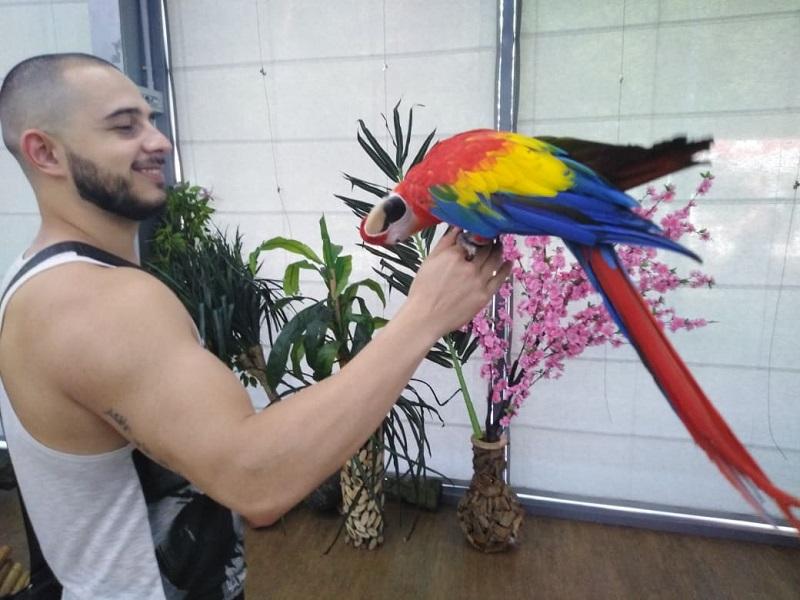 Папагали и пеперуди излагат във Флората