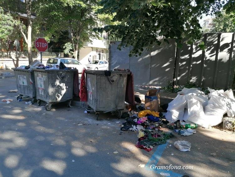 Бургазлии искат затворени контейнери: Клошари и гларуси им разпиляват боклука