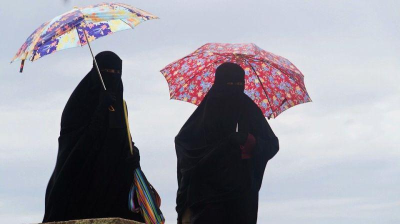 Първа глоба в Дания за жена, която крие лицето си с ислямско було